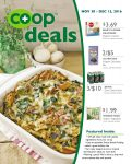 coop deals dec 2016 flyer a