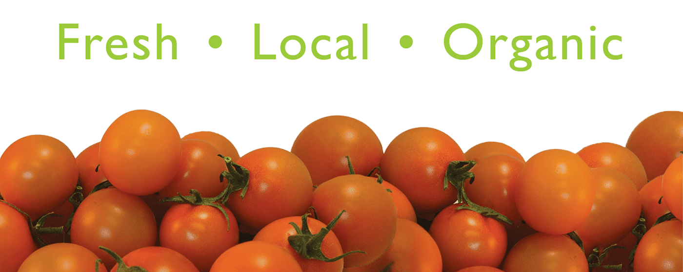Fresh Local Organic Sungold Tomatoes