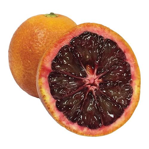 Blood Orange pic