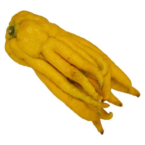 Buddha's Hand pi