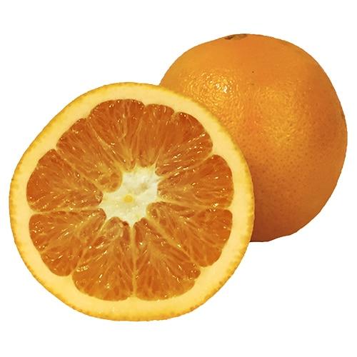 Navel Orange pic