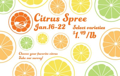 Citrus-Spree-Slider-mobile