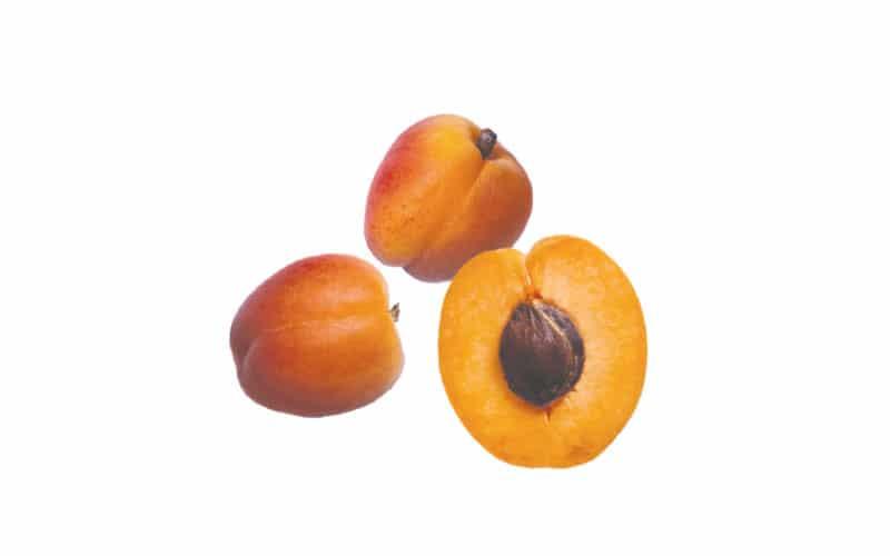 Co-op Sales Organic Apricots