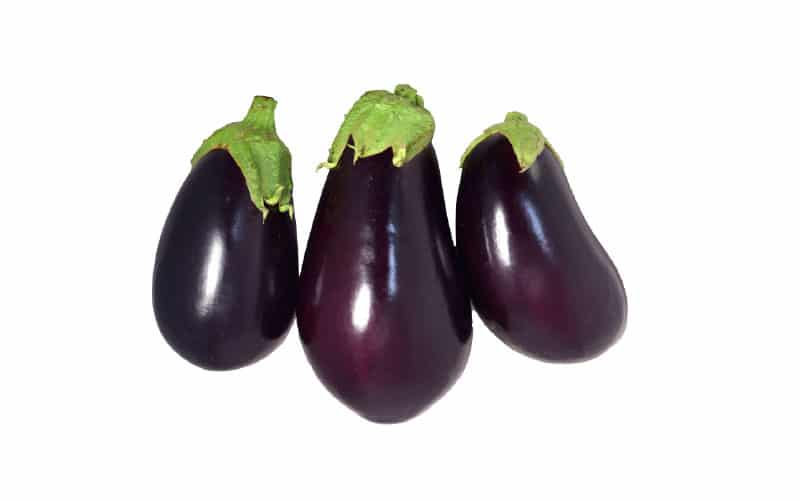 Co-op Sales Spring Hill Farm Organic Local Eggplant