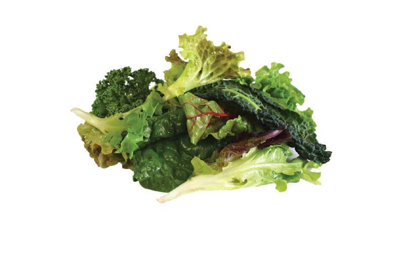 Co-op Sales Local Organic Salad Mix