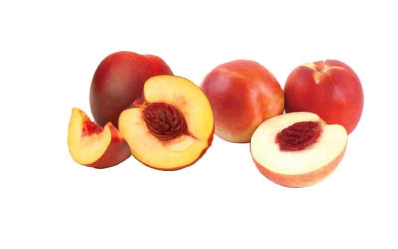 Co-op Sales Organic Nectarines