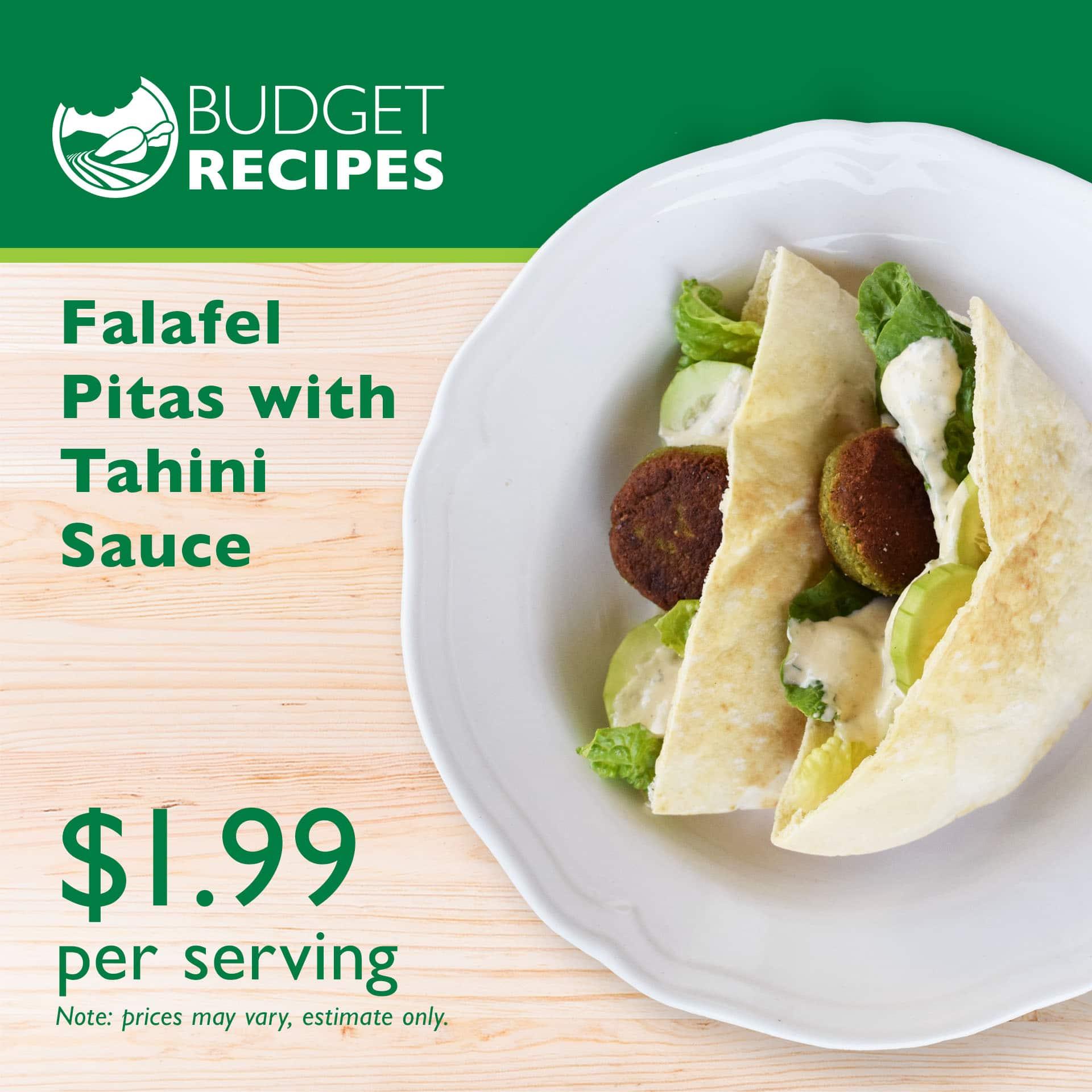 Budget Recipe Falafel Pitas