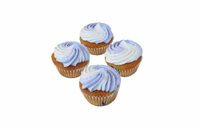 WF Blueberry Cupcakes